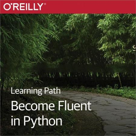 Learning Path - Become Fluent in Python