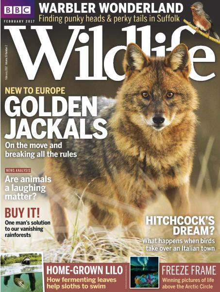 BBC Wildlife - February 2017