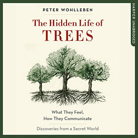 Peter Wohlleben - The Hidden Life of Trees: What They Feel, How They Communicate - Discoveries from a Secret World