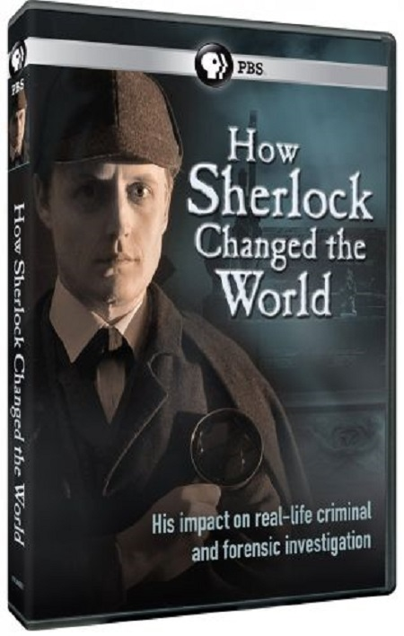 How Sherlock Changed the World (2013) 720p WEB h264-MVGroup