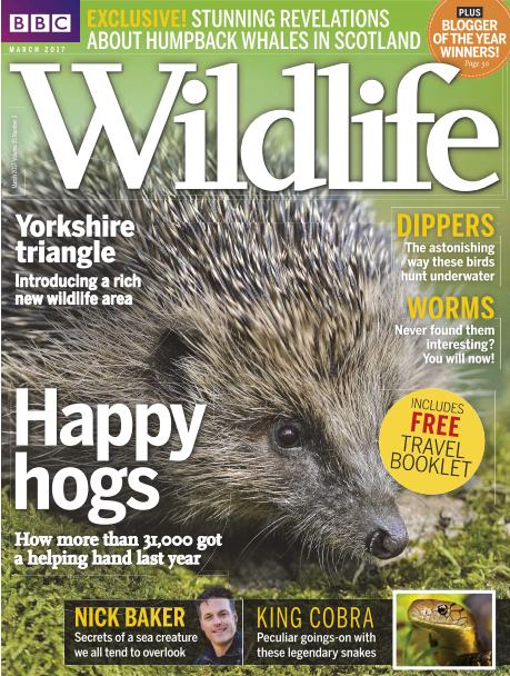 BBC Wildlife - March 2017