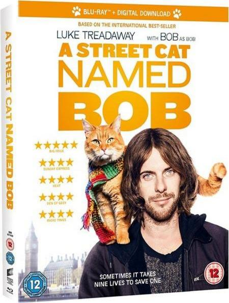 A Street Cat Named Bob (2016) BRRip XviD AC3-EVO