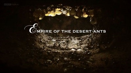 BBC Natural World - Empire of the Desert Ants (2011) 720p WEBRip AAC 2.0 H264-RTN