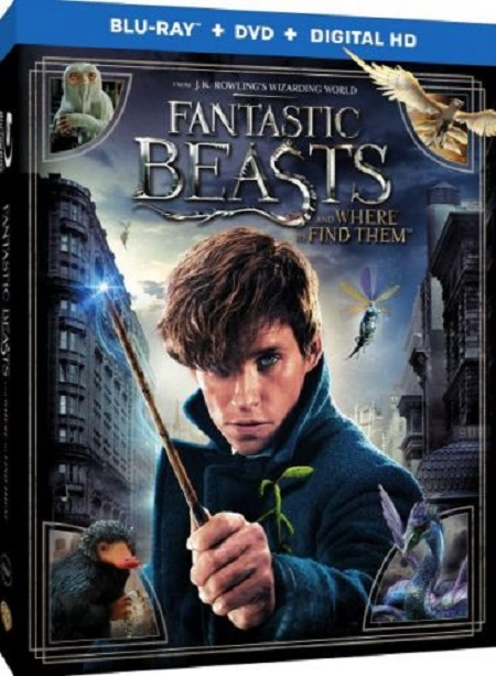 Fantastic Beasts and Where to Find Them (2016) 900p BluRay 3Mbps AAC5 1 MP4-FASM