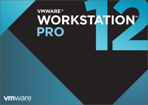 VMware Workstation Pro 12.5.6 Build 5528349