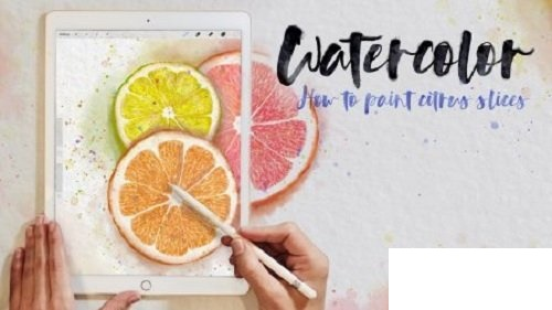 Watercolor Illustrations in Procreate 5: How to Paint Citrus Slices ...